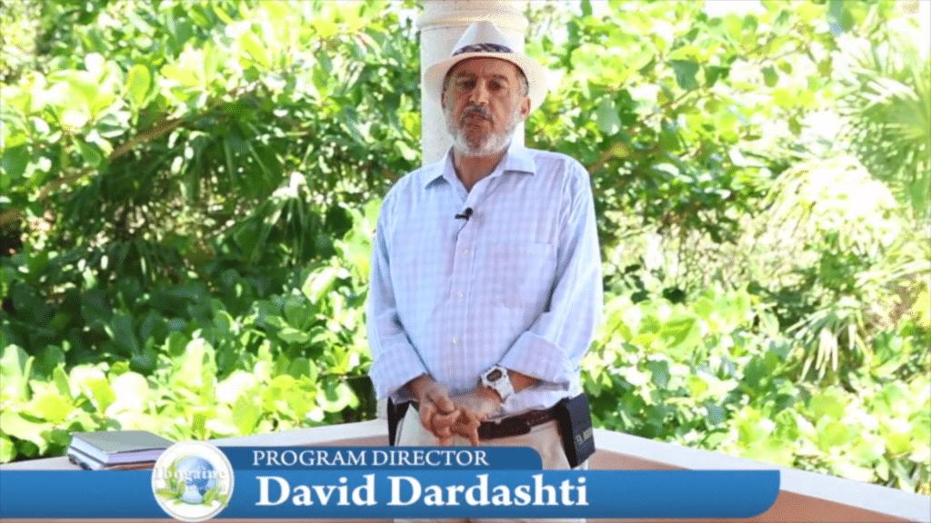 david ibogaine depression 2